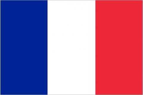 sticker-drapeau-francais-ambiance-sticker-col-ROS-A321.jpg